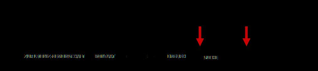 Screenshot LERN-Website Suchleiste